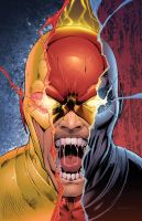 Reverse/Flash/Zoom by DashMartin