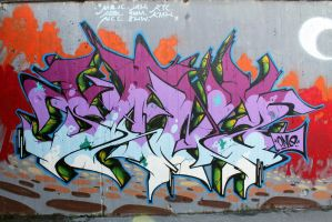 SANZ ONE - SB GRAFFITI FEST 2013 by SANS-01-2-MHC-BS