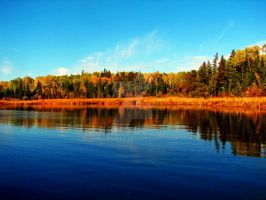 Fall In Canada by mskrissi87