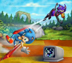 Art Trade: Sonic vs the Chaos Hunter by DoubleDandE