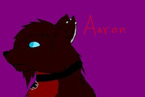 Aaron Profile by Bloodstainedhowl
