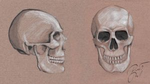 Skull Practice by Slauer