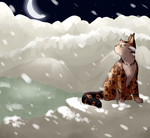 so long to this cold cold part of the world by Spiritpie