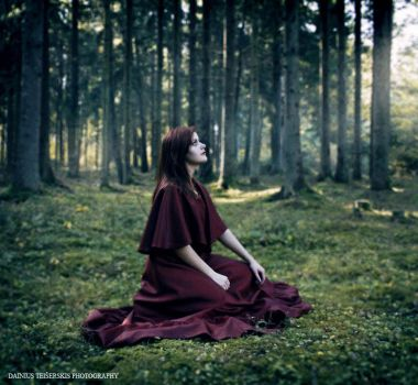 Girl in the forest 2 by orlibraorli