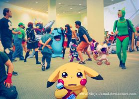 Wild Pokemon Anime Expo 2013 at the hangout floor