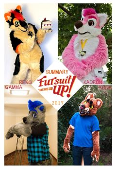 2017 suit summary by Grion