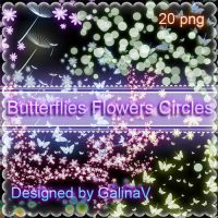Butterflies, Flowers, Circles with shining effect by GalinaV