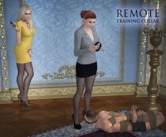 Remote collar by Rometheus