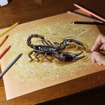 Drawing a scorpion by marcellobarenghi