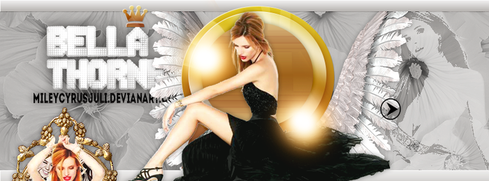 Header++ by mileycyrusjuli