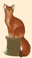(20) Squirrelflight by th1stlew1ng