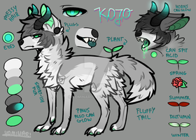 Kojo [Reference Sheet] by Yominari