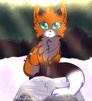 The Life Of A Fox by Ivy-Frost18