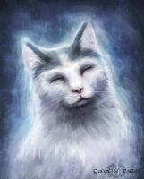 Gift - Magic Cat by queenofeagles