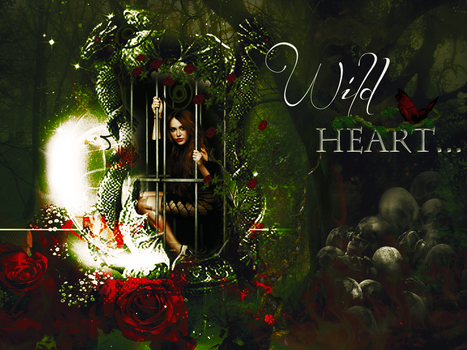 ++Wild Heart by MoiraRusher
