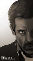 House MD Detail by PoaAlpina