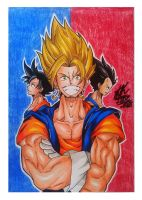 Goku, Vegetto and Vegeta by Johlsenhando
