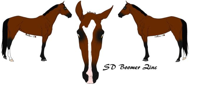 SD Boomer Zinc by faithers-1998