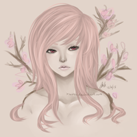 Cherry Blossoms by Octish