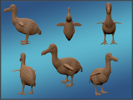 Dodo model by MrGorsh