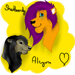 AT Shetlandy and Alcyon by xLittleFrankx
