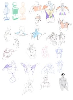 Backs and Shoulders by Eyecager