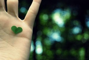 Your heart in my hands by Eissacholland