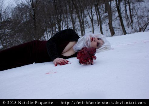 Blood and Snow I by fetishfaerie-stock