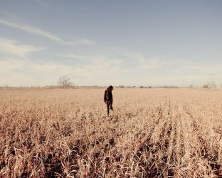 Alora and a field ii by Andross01