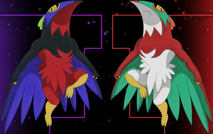 light and dark hawlucha