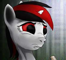 Blackjack the Stable Pony by AaronMk