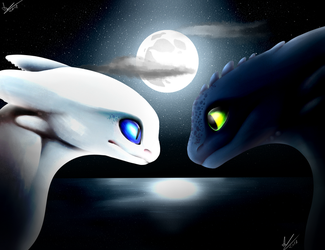 The Light and The Night by AriaAngelwing