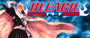 Bleach Sign by Meta-link05
