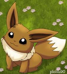 Eevee! I choose you! by pichu90
