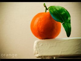 Orange Story by Szabiphotograph