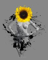 Sunflower by xavierlokollo