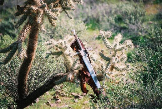 Claymore in the Cactus by Highlander-Club
