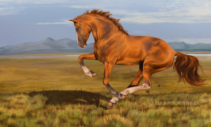 I saw the golden stallion by Seenae