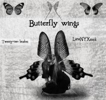 Butterfly wings by LunaNYXstock