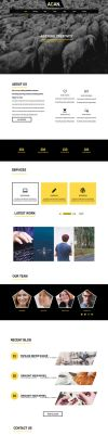 ACAN Template Free Html and PSD by kingsol04