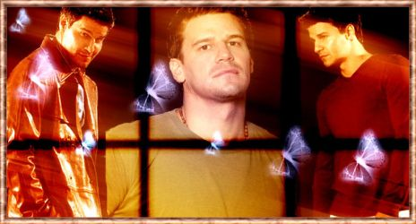 David Boreanaz Banner by littlevampdoll