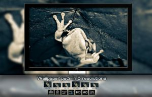 Wallpaper albino frog by ipawluk