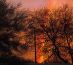 Sunset, Rainbow and Mesquite Trees by theFabulousUnknown