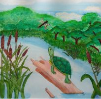Turtle in pond Two by StormmeKinkade