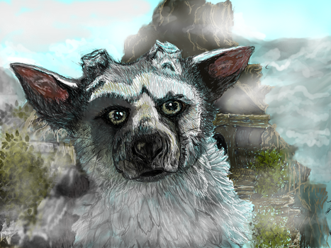 Trico by shymuse2014