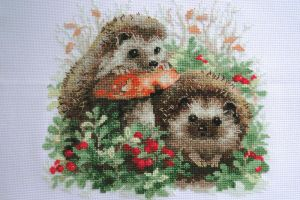 Hedgehogs in cranberries by Thriin