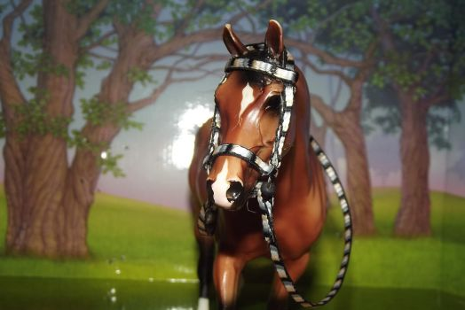 Iris || New Bridle by NorthernMyth