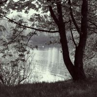 By the Lake-Silence by sternenfern