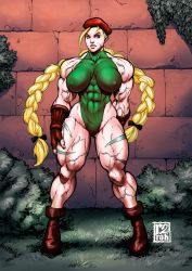 Cammy by r2roh