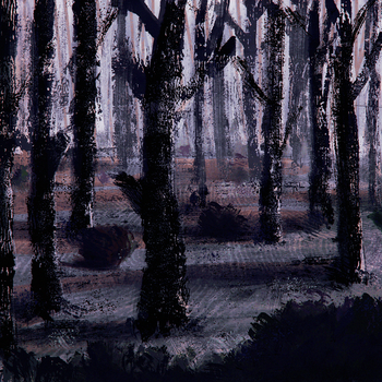 Forest by ostrysharp